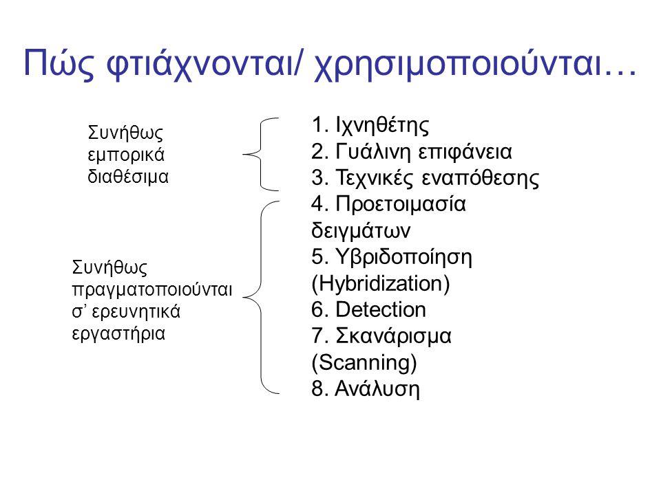 Οι ιχνηθέτες… Καλύπτουν ~ 1cm2 στη γυάλινη επιφάνεια Εναποτίθενται ~ 100,000s ιχνηθέτες Τα ολιγονουκλεοτίδια εναποτίθενται ή συνθέτονται επάνω στη γυάλινη επιφάνεια Για κάθε γονίδιο χρησιμοποιούνται 1-20 ιχνηθέτες Κάθε ιχνηθέτης είναι συμπληρωματικός για ένα μόνο μέρος του γονιδίου Αυστηρά κριτήρια επιλογής ιχνηθετών Περιοχές συμπληρωματικές ιχνηθετών Εξώνια Εσώνια 5' 3'