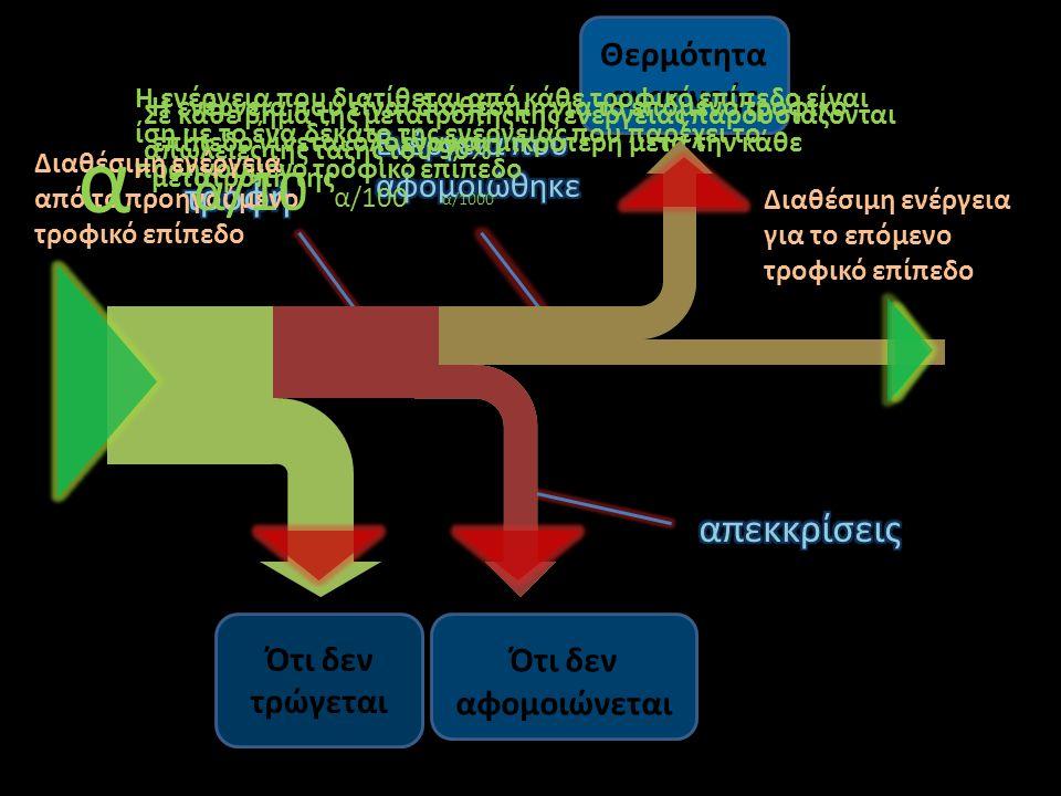 Ότι δεν τρώγεται Ότι δεν αφομοιώνεται Θερμότητα αναπνοής Η ενέργεια που είναι διαθέσιμη για το επόμενο τροφικό επίπεδο γίνεται ολοένα και μικρότερη μετα την κάθε μετατροπή της Σε κάθε βήμα της μετατροπής της ενέργειας παρουσιάζονται απώλειες της τάξης του 90% Η ενέργεια που διατίθεται από κάθε τροφικό επίπεδο είναι ίση με το ένα δέκατο της ενέργειας που παρέχει το προηγούμενο τροφικό επίπεδο Διαθέσιμη ενέργεια από το προηγούμενο τροφικό επίπεδο α α/10 α/100 α/1000 Διαθέσιμη ενέργεια για το επόμενο τροφικό επίπεδο