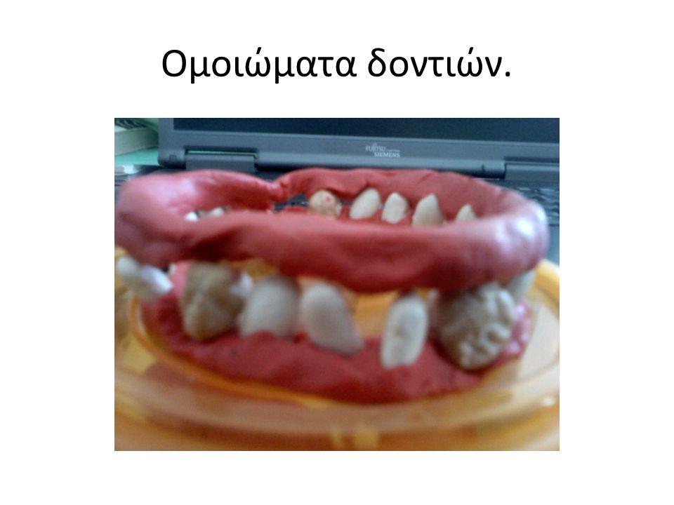 Ομοιώματα δοντιών.