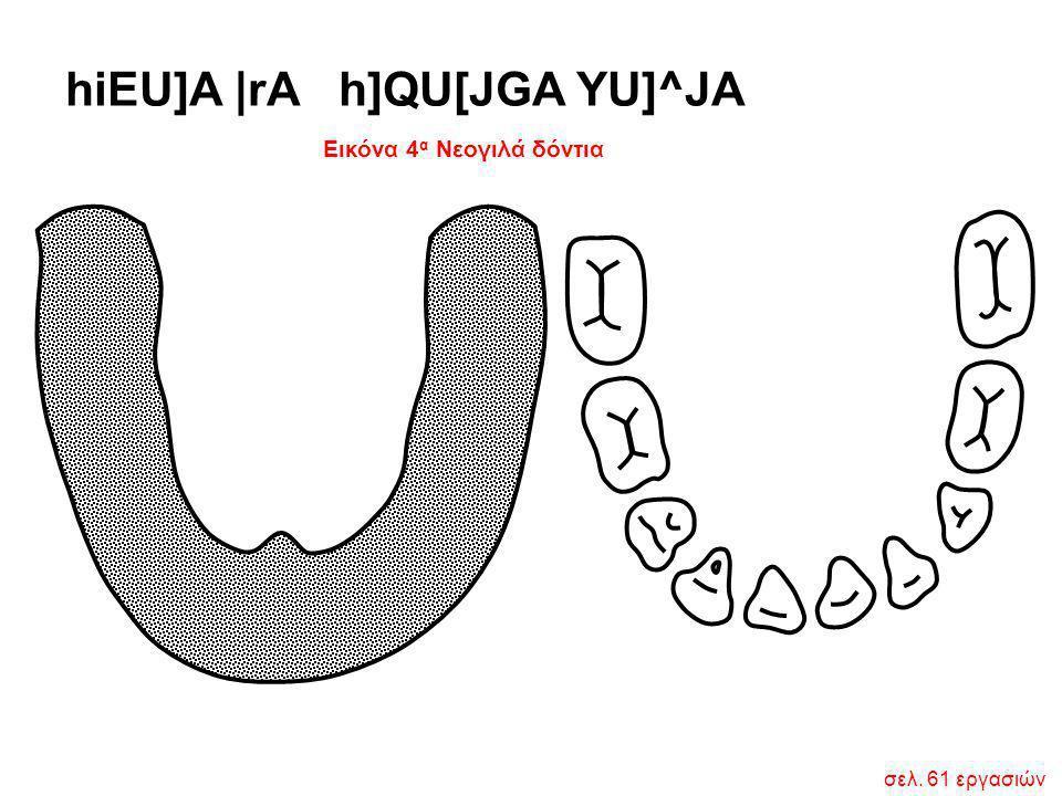Εικόνα 4 α Νεογιλά δόντια hiEU]A  rA h]QU[JGA YU]^JA σελ. 61 εργασιών