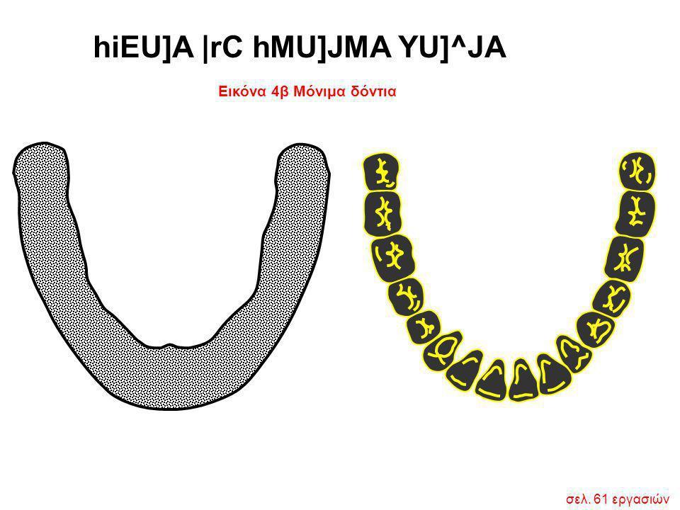 Εικόνα 4β Μόνιμα δόντια hiEU]A  rC hMU]JMA YU]^JA σελ. 61 εργασιών