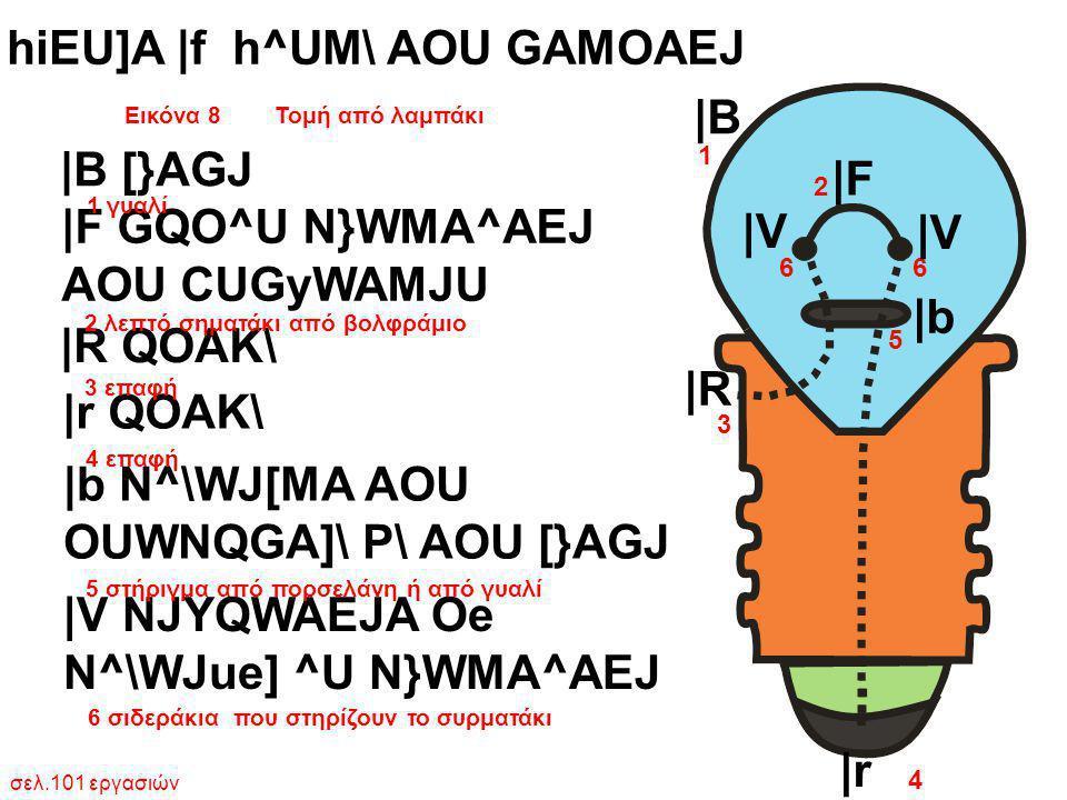 Εικόνα 8 Τομή από λαμπάκι σελ.101 εργασιών 1 2 3 5 6 4 hiEU]A  f h^UM\ AOU GAMOAEJ  B [}AGJ  F GQO^U N}WMA^AEJ AOU CUGyWAMJU  R QOAK\  r QOAK\  b N^\W