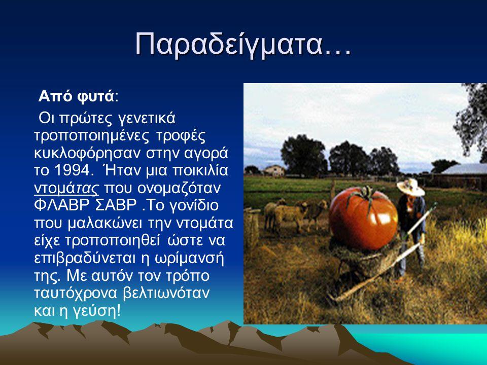 Παραδείγματα… Από φυτά: Οι πρώτες γενετικά τροποποιημένες τροφές κυκλοφόρησαν στην αγορά το 1994. Ήταν μια ποικιλία ντομάτας που ονομαζόταν ΦΛΑΒΡ ΣΑΒΡ