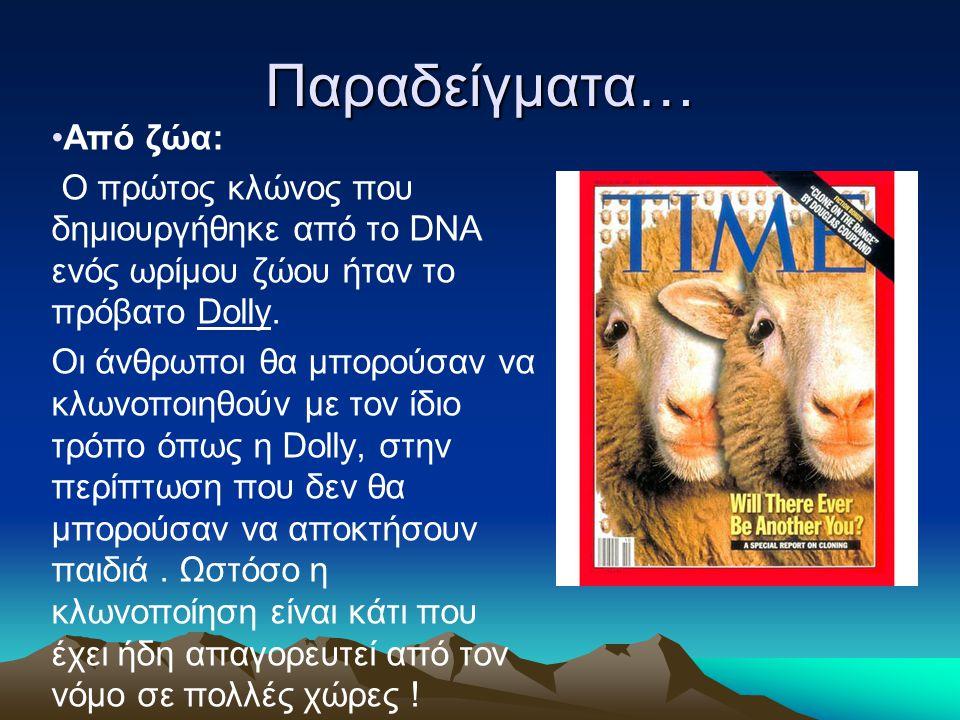 Παραδείγματα… Από ζώα: Ο πρώτος κλώνος που δημιουργήθηκε από το DNA ενός ωρίμου ζώου ήταν το πρόβατο Dolly. Οι άνθρωποι θα μπορούσαν να κλωνοποιηθούν