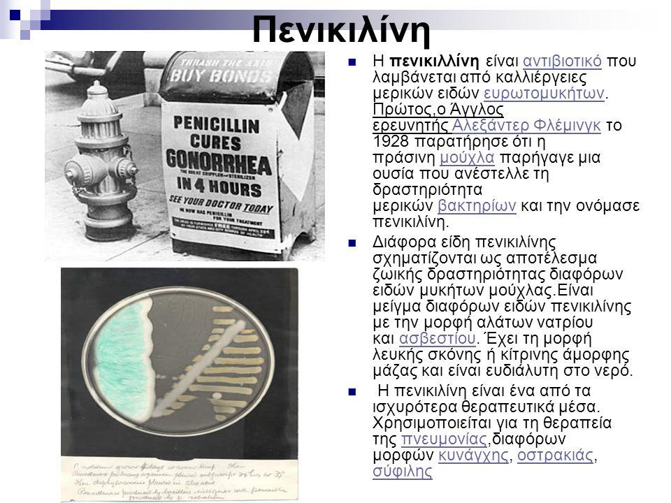 Πενικιλίνη Η πενικιλλίνη είναι αντιβιοτικό που λαμβάνεται από καλλιέργειες μερικών ειδών ευρωτομυκήτων.