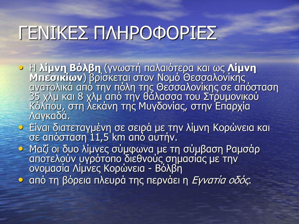 ΓΕΝΙΚΕΣ ΠΛΗΡΟΦΟΡΙΕΣ Η λίμνη Βόλβη (γνωστή παλαιότερα και ως Λίμνη Μπεσικίων) βρίσκεται στον Νομό Θεσσαλονίκης ανατολικά από την πόλη της Θεσσαλονίκης