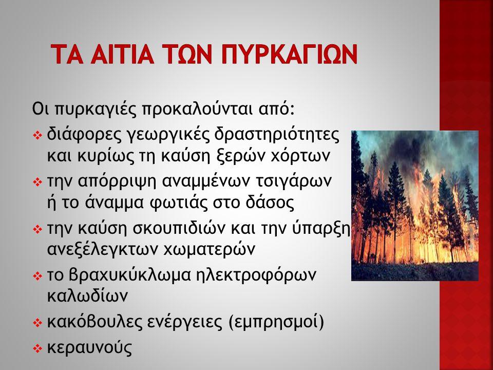 Οι πυρκαγιές προκαλούνται από:  διάφορες γεωργικές δραστηριότητες και κυρίως τ η καύση ξερών χόρτων  την απόρριψη αναμμένων τσιγάρων ή το άναμμα φωτιάς στο δάσος  την καύση σκουπιδιών και τ η ν ύπαρξη ανεξέλεγκτων χωματερών  το βραχυκύκλωμα ηλεκτροφόρων καλωδίων  κακόβουλες ενέργειες (εμπρησμοί)  κεραυνο ύς