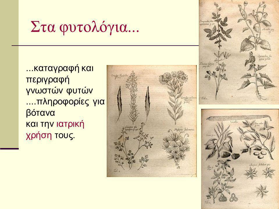 Στα φυτολόγια......καταγραφή και περιγραφή γνωστών φυτών....πληροφορίες για βότανα και την ιατρική χρήση τους.