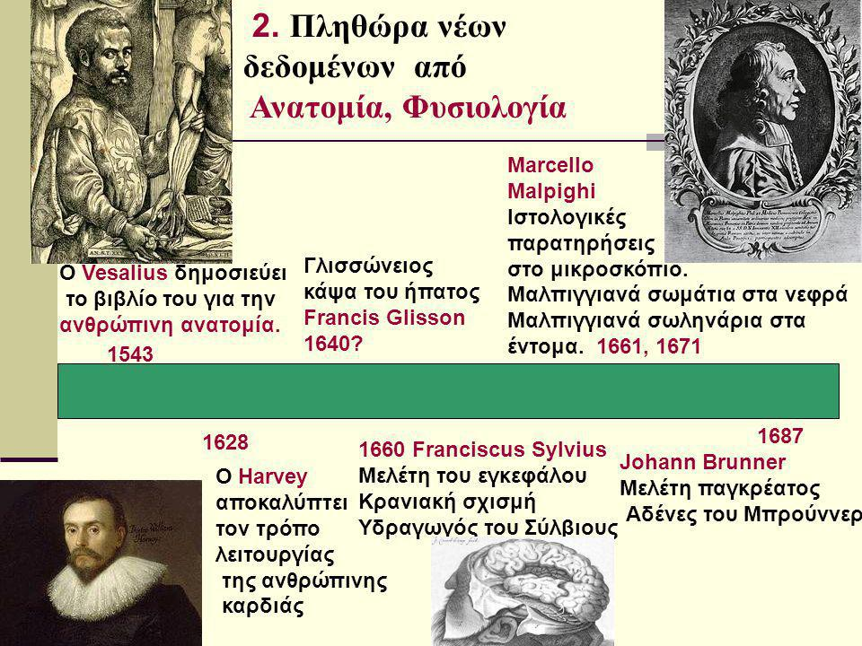 Ο Vesalius δημοσιεύει το βιβλίο του για την ανθρώπινη ανατομία. 1543 Ο Harvey αποκαλύπτει τον τρόπο λειτουργίας της ανθρώπινης καρδιάς 1628 2. Πληθώρα