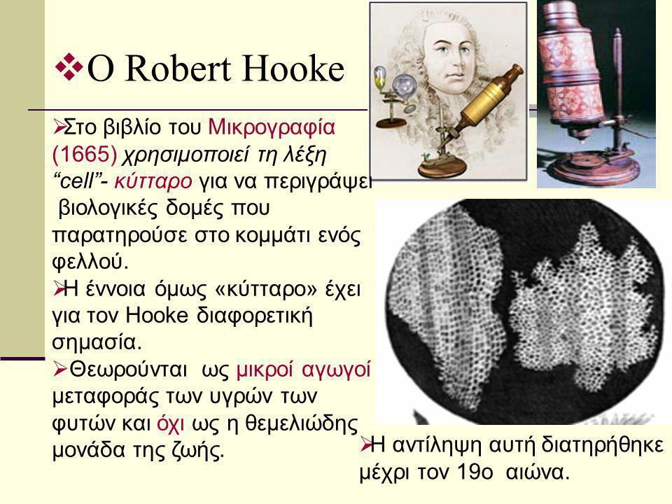 """ Ο Robert Hooke  Στο βιβλίο του Μικρογραφία (1665) χρησιμοποιεί τη λέξη """"cell""""- κύτταρο για να περιγράψει βιολογικές δομές που παρατηρούσε στο κομμά"""