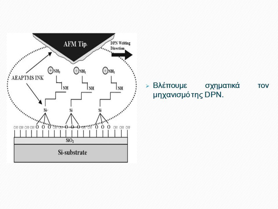 Βλέπουμε σχηματικά τον μηχανισμό της DPN.