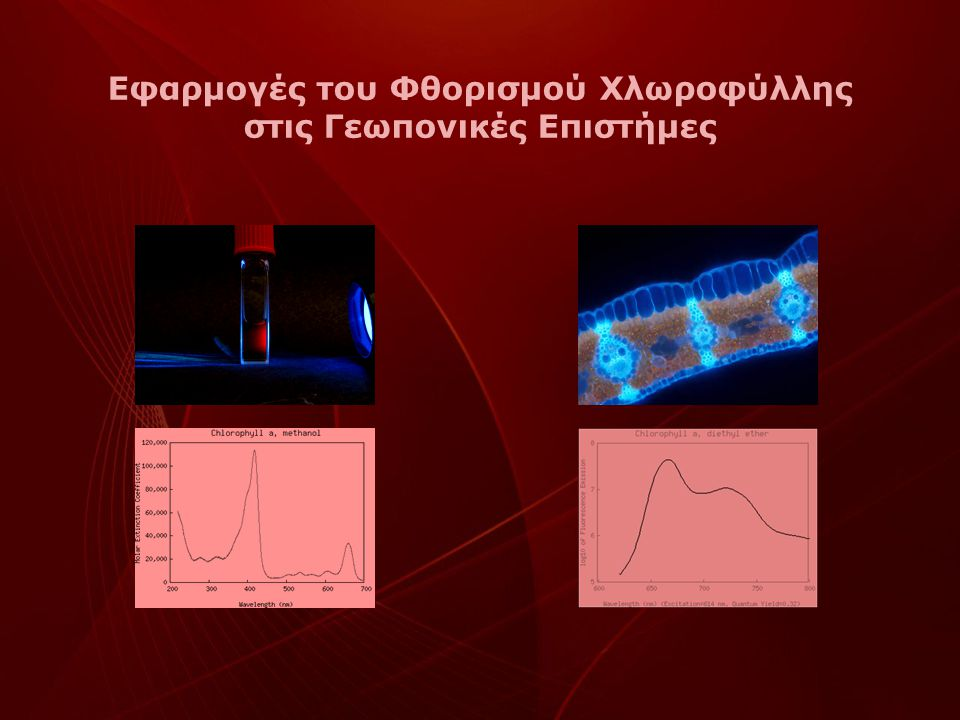 Εφαρμογές του Φθορισμού Χλωροφύλλης στις Γεωπονικές Επιστήμες