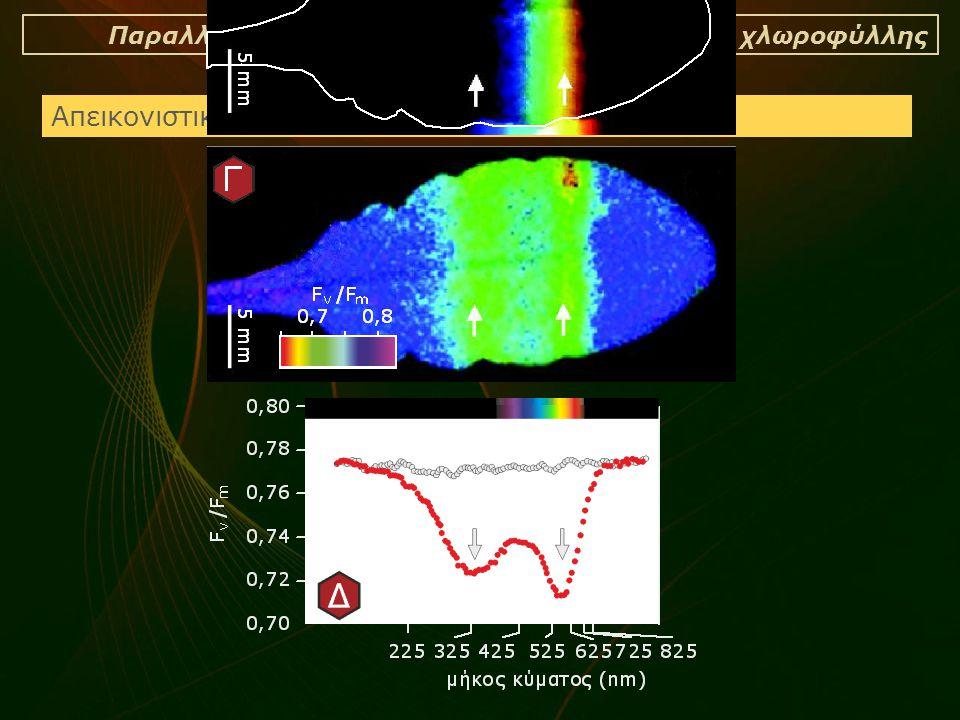 Παραλλαγές της τεχνικής της φθορισμομετρίας χλωροφύλλης Απεικονιστική φθορισμομετρία