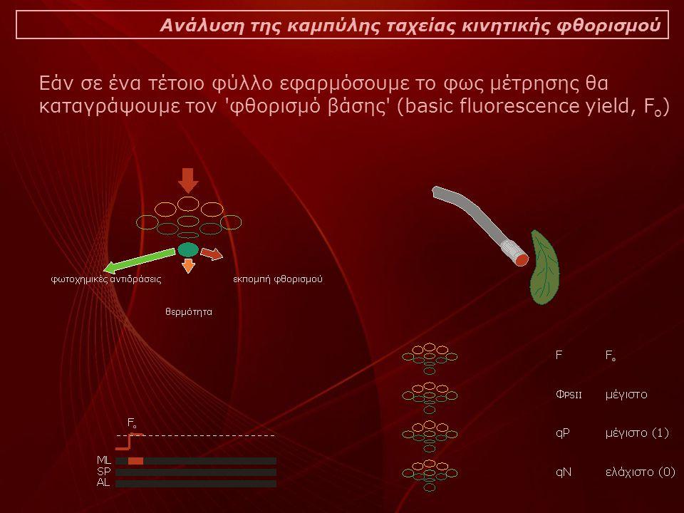 Ανάλυση της καμπύλης ταχείας κινητικής φθορισμού Εάν σε ένα τέτοιο φύλλο εφαρμόσουμε το φως μέτρησης θα καταγράψουμε τον φθορισμό βάσης (basic fluorescence yield, F o )