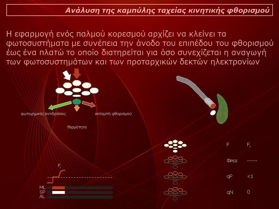 Ανάλυση της καμπύλης ταχείας κινητικής φθορισμού Η εφαρμογή ενός παλμού κορεσμού αρχίζει να κλείνει τα φωτοσυστήματα με συνέπεια την άνοδο του επιπέδου του φθορισμού έως ένα πλατώ το οποίο διατηρείται για όσο συνεχίζεται η αναγωγή των φωτοσυστημάτων και των προταρχικών δεκτών ηλεκτρονίων