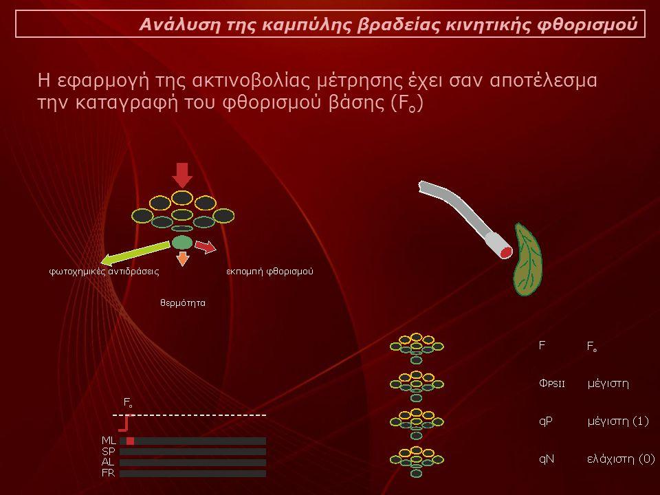 Ανάλυση της καμπύλης βραδείας κινητικής φθορισμού Η εφαρμογή της ακτινοβολίας μέτρησης έχει σαν αποτέλεσμα την καταγραφή του φθορισμού βάσης (F o )