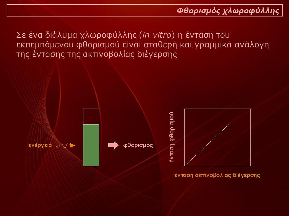 Σε ένα διάλυμα χλωροφύλλης (in vitro) η ένταση του εκπεμπόμενου φθορισμού είναι σταθερή και γραμμικά ανάλογη της έντασης της ακτινοβολίας διέγερσης Φθορισμός χλωροφύλλης