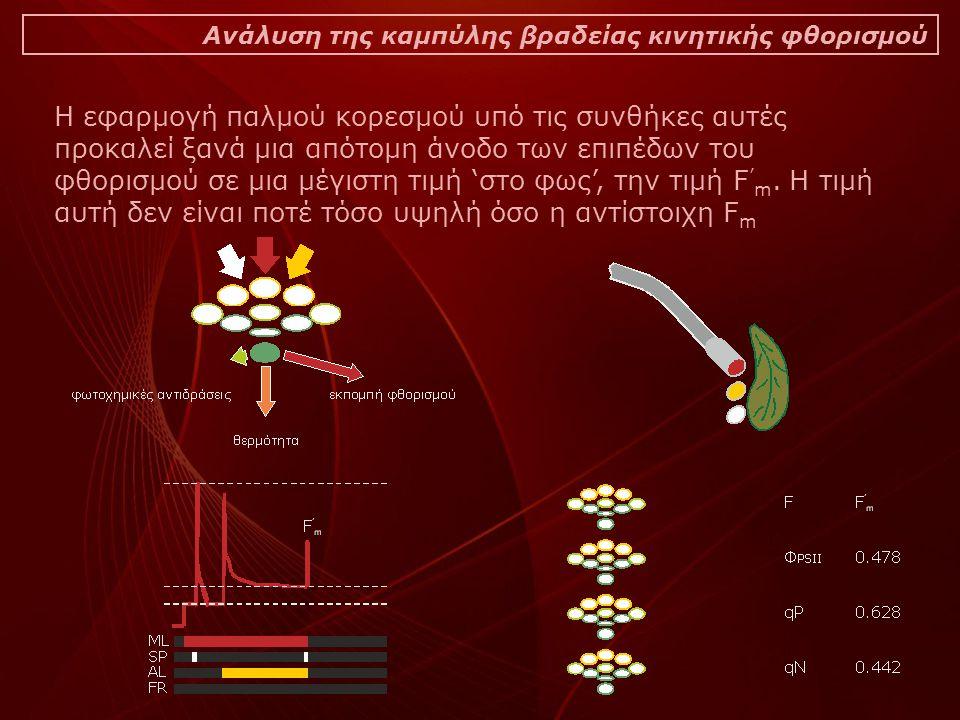 Ανάλυση της καμπύλης βραδείας κινητικής φθορισμού Η εφαρμογή παλμού κορεσμού υπό τις συνθήκες αυτές προκαλεί ξανά μια απότομη άνοδο των επιπέδων του φθορισμού σε μια μέγιστη τιμή 'στο φως', την τιμή F ' m.