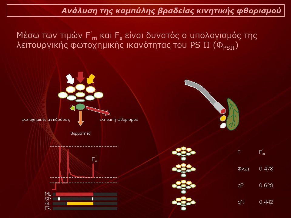 Ανάλυση της καμπύλης βραδείας κινητικής φθορισμού Μέσω των τιμών F ' m και F s είναι δυνατός ο υπολογισμός της λειτουργικής φωτοχημικής ικανότητας του PS II (Φ PSII )