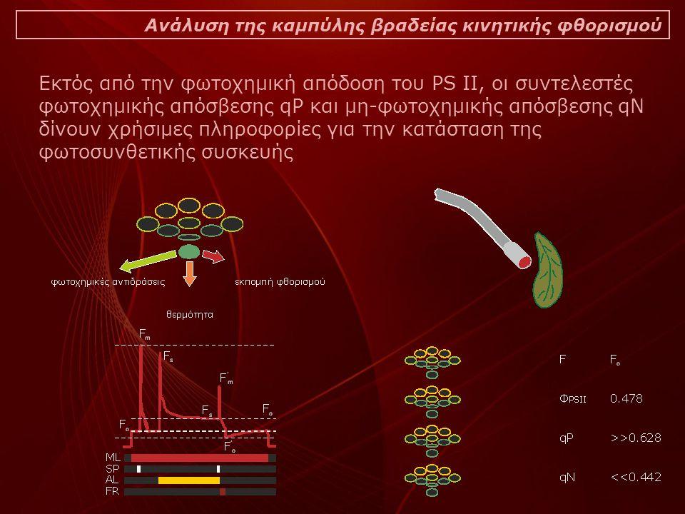 Ανάλυση της καμπύλης βραδείας κινητικής φθορισμού Εκτός από την φωτοχημική απόδοση του PS II, οι συντελεστές φωτοχημικής απόσβεσης qP και μη-φωτοχημικής απόσβεσης qN δίνουν χρήσιμες πληροφορίες για την κατάσταση της φωτοσυνθετικής συσκευής