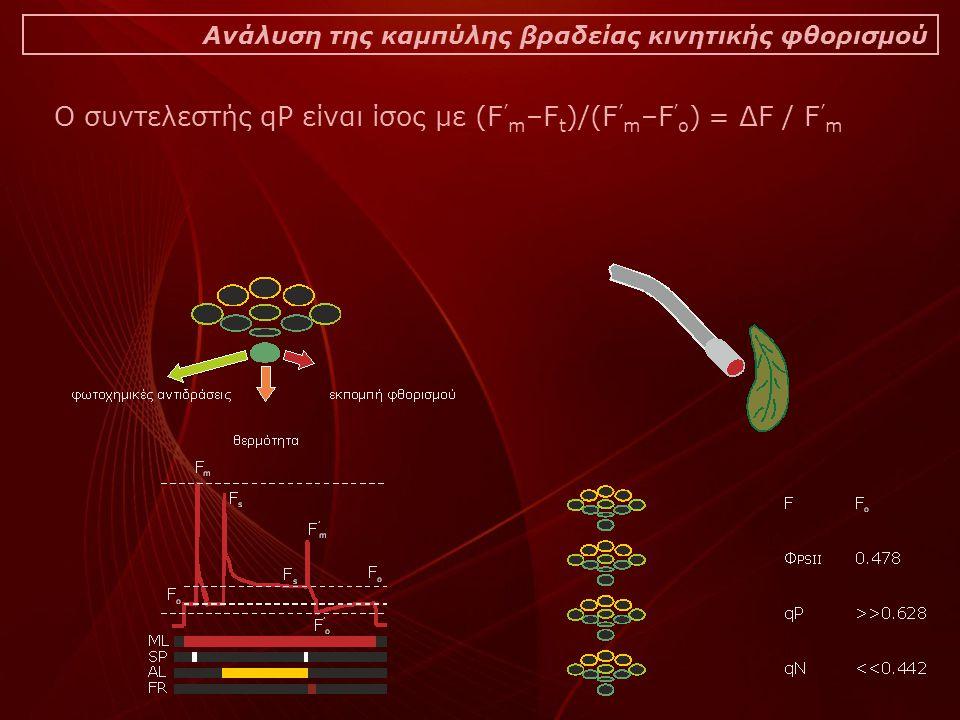 Ανάλυση της καμπύλης βραδείας κινητικής φθορισμού Ο συντελεστής qP είναι ίσος με (F ' m –F t )/(F ' m –F ' o ) = ΔF / F ' m