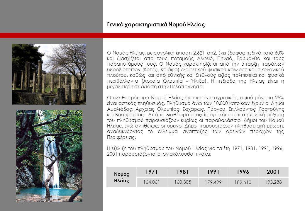 οικονομικά στοιχεία ποσοστιαία κατανομή % του ΑΕΠ για το Νομό Ηλείας 199219951998 Γεωργία 26,326,821,6 Βιομηχανία 14,417,316,2 Υπηρεσίες 59,355,862,2 Ο Πρωτογενής τομέας στην Περιφέρεια Δυτικής Ελλάδας και επομένως και στο Νομό Ηλείας παρότι αποτελεί σημαντικό πόλο απασχόλησης και οικονομικής δραστηριότητας έχει χαμηλή ανταγωνιστικότητα λόγω του υψηλού κόστους και της χαμηλής ποιότητας των προϊόντων, αλλά και λόγω των αδυναμιών που υπάρχουν στον τομέα διακίνησης και εμπορίας.