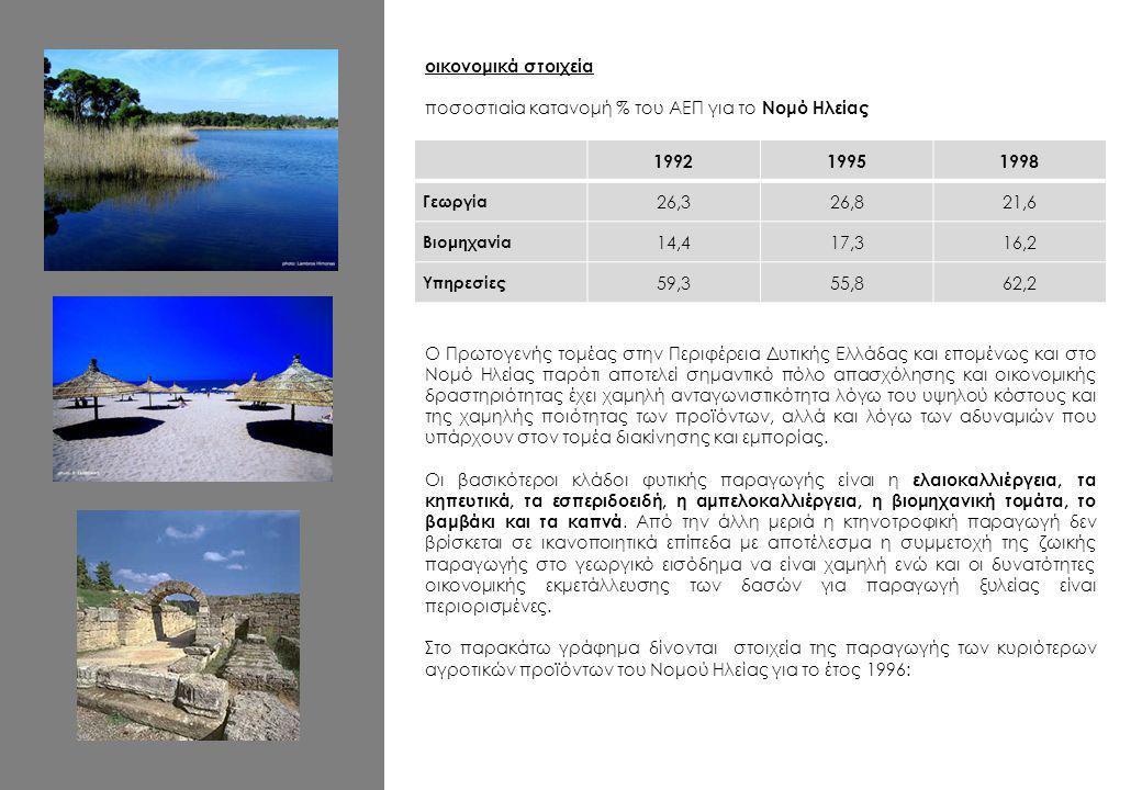 οικονομικά στοιχεία ποσοστιαία κατανομή % του ΑΕΠ για το Νομό Ηλείας 199219951998 Γεωργία 26,326,821,6 Βιομηχανία 14,417,316,2 Υπηρεσίες 59,355,862,2