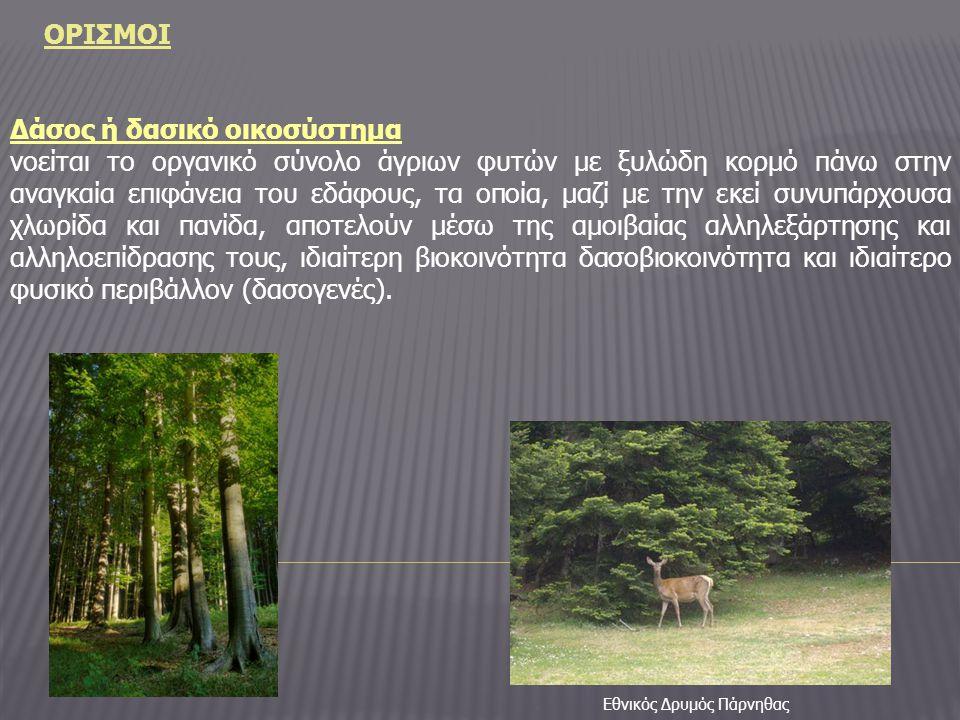 ΟΡΙΣΜΟΙ Δάσος ή δασικό οικοσύστημα νοείται το οργανικό σύνολο άγριων φυτών με ξυλώδη κορμό πάνω στην αναγκαία επιφάνεια του εδάφους, τα οποία, μαζί με την εκεί συνυπάρχουσα χλωρίδα και πανίδα, αποτελούν μέσω της αμοιβαίας αλληλεξάρτησης και αλληλοεπίδρασης τους, ιδιαίτερη βιοκοινότητα δασοβιοκοινότητα και ιδιαίτερο φυσικό περιβάλλον (δασογενές).