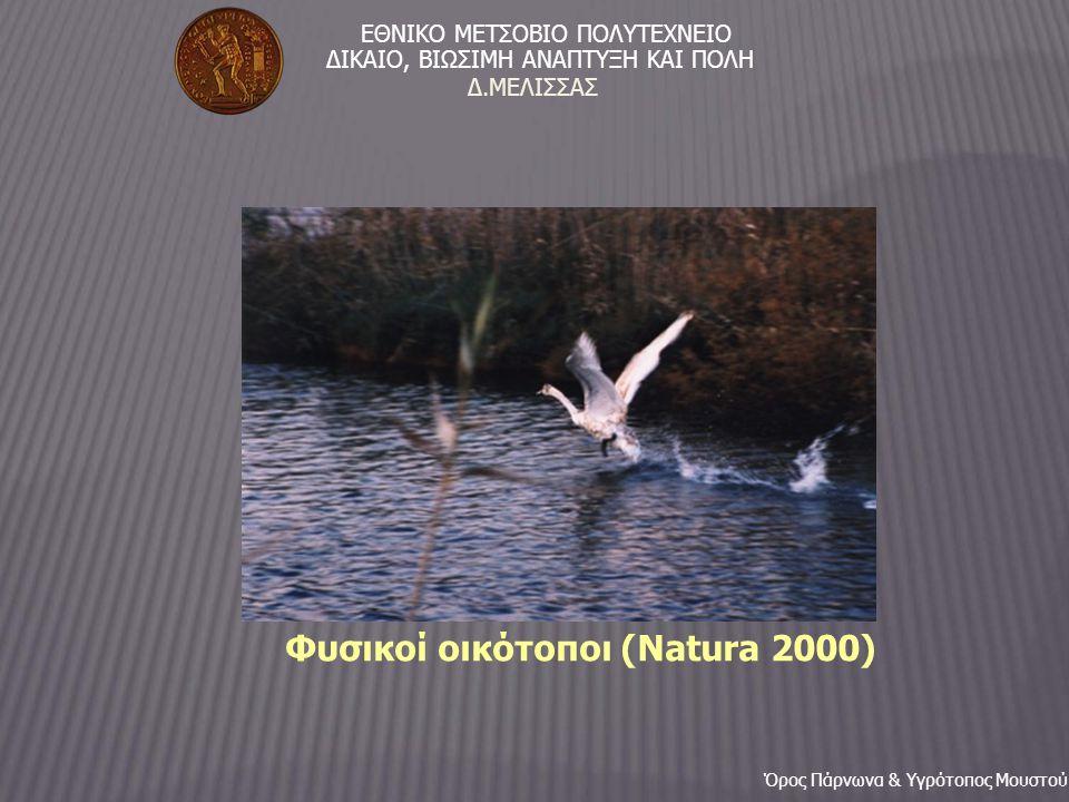 Φυσικοί οικότοποι (Natura 2000) ΕΘΝΙΚΟ ΜΕΤΣΟΒΙΟ ΠΟΛΥΤΕΧΝΕΙΟ ΔIΚΑΙΟ, ΒIΩΣΙΜΗ ΑΝΑΠΤΥΞΗ ΚΑΙ ΠΟΛΗ Όρος Πάρνωνα & Υγρότοπος Μουστού Δ.ΜΕΛΙΣΣΑΣ