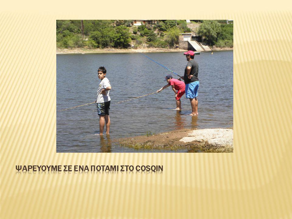 Siete Cascadas σημαίνει στα ελληνικά εφτά καταρράκτες. Δυστυχώς όμως τώρα στέγνωσαν.