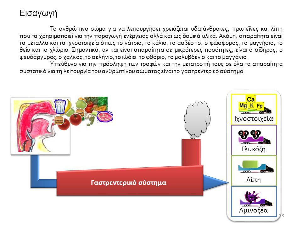 Εισαγωγή 28 Γαστρεντερικό σύστημα Ιχνοστοιχεία Γλυκόζη Λίπη Αμινοξέα Το ανθρώπινο σώμα για να λειτουργήσει χρειάζεται υδατάνθρακες, πρωτεΐνες και λίπη