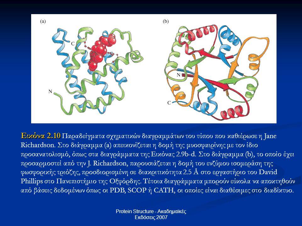 Protein Structure - Ακαδημαϊκές Εκδόσεις 2007 Εικόνα 2.10 Εικόνα 2.10 Παραδείγματα σχηματικών διαγραμμάτων του τύπου που καθιέρωσε η Jane Richardson.