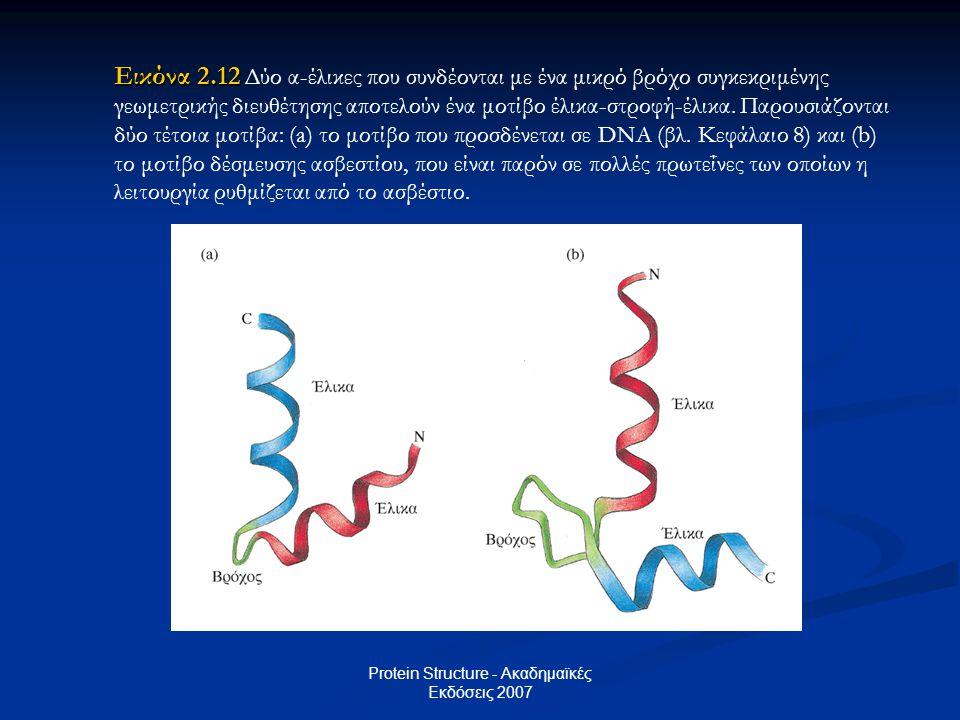 Protein Structure - Ακαδημαϊκές Εκδόσεις 2007 Εικόνα 2.12 Εικόνα 2.12 Δύο α-έλικες που συνδέονται με ένα μικρό βρόχο συγκεκριμένης γεωμετρικής διευθέτ