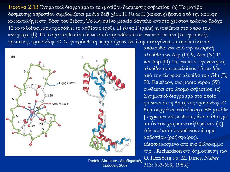 Protein Structure - Ακαδημαϊκές Εκδόσεις 2007 Εικόνα 2.13 Εικόνα 2.13 Σχηματικά διαγράμματα του μοτίβου δέσμευσης ασβεστίου. (a) Το μοτίβο δέσμευσης α