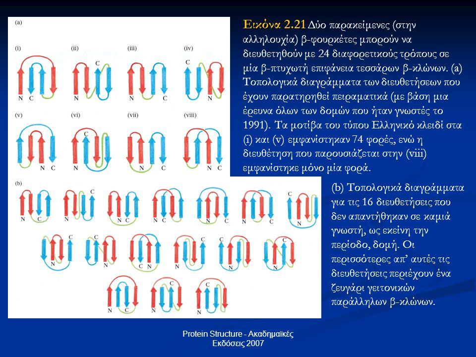 Protein Structure - Ακαδημαϊκές Εκδόσεις 2007 Εικόνα 2.21 Εικόνα 2.21 Δύο παρακείμενες (στην αλληλουχία) β-φουρκέτες μπορούν να διευθετηθούν με 24 δια