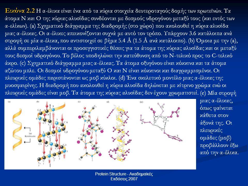 Protein Structure - Ακαδημαϊκές Εκδόσεις 2007 Εικόνα 2.2 Εικόνα 2.2 Η α-έλικα είναι ένα από τα κύρια στοιχεία δευτεροταγούς δομής των πρωτεϊνών. Τα άτ