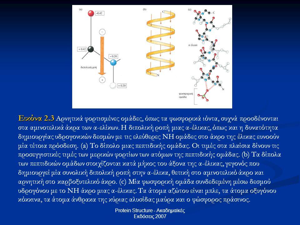 Protein Structure - Ακαδημαϊκές Εκδόσεις 2007 Εικόνα 2.3 Εικόνα 2.3 Αρνητικά φορτισμένες ομάδες, όπως τα φωσφορικά ιόντα, συχνά προσδένονται στα αμινο