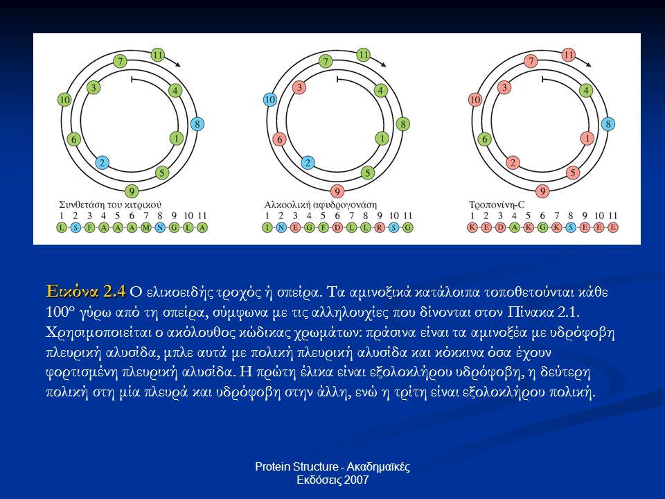 Protein Structure - Ακαδημαϊκές Εκδόσεις 2007 Εικόνα 2.4 Εικόνα 2.4 Ο ελικοειδής τροχός ή σπείρα. Tα αμινοξικά κατάλοιπα τοποθετούνται κάθε 100° γύρω