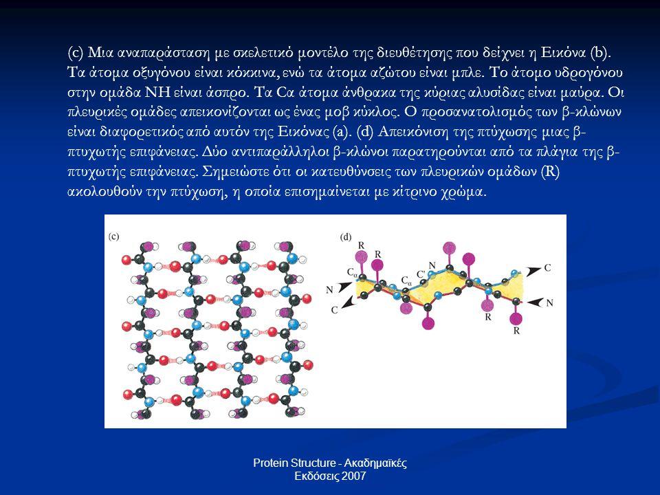 Protein Structure - Ακαδημαϊκές Εκδόσεις 2007 (c) Μια αναπαράσταση με σκελετικό μοντέλο της διευθέτησης που δείχνει η Εικόνα (b). Τα άτομα οξυγόνου εί