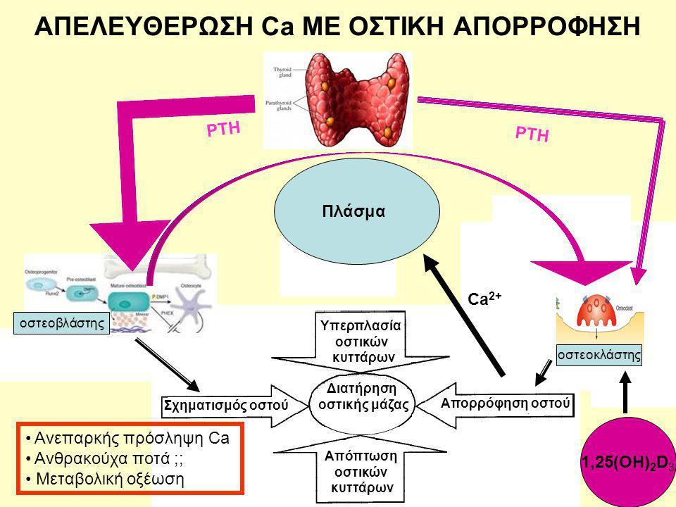 Απόπτωση οστικών κυττάρων Διατήρηση οστικής μάζας Σχηματισμός οστού Απορρόφηση οστού Διατήρηση οστικής μάζας Απόπτωση οστικών κυττάρων Διατήρηση οστικής μάζας Σχηματισμός οστού Απόπτωση οστικών κυττάρων Διατήρηση οστικής μάζας Διατήρηση οστικής μάζας Απόπτωση οστικών κυττάρων Διατήρηση οστικής μάζας Απόπτωση οστικών κυττάρων Διατήρηση οστικής μάζας Διατήρηση οστικής μάζας Απόπτωση οστικών κυττάρων Διατήρηση οστικής μάζας Διατήρηση οστικής μάζας Διατήρηση οστικής μάζας οστεοβλάστης οστεοκλάστης Υπερπλασία οστικών κυττάρων Σχηματισμός οστού Απορρόφηση οστού Απόπτωση οστικών κυττάρων Διατήρηση οστικής μάζας Πλάσμα ΑΠΕΛΕΥΘΕΡΩΣΗ Ca ΜΕ ΟΣΤΙΚΗ ΑΠΟΡΡΟΦΗΣΗ ΡΤΗ 1,25(ΟΗ) 2 D 3 Ca 2+ οστεοβλάστης Ανεπαρκής πρόσληψη Ca Ανθρακούχα ποτά ;; Μεταβολική οξέωση