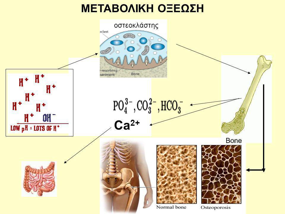 ΜΕΤΑΒΟΛΙΚΗ ΟΞΕΩΣΗ οστεοκλάστης Ca 2+