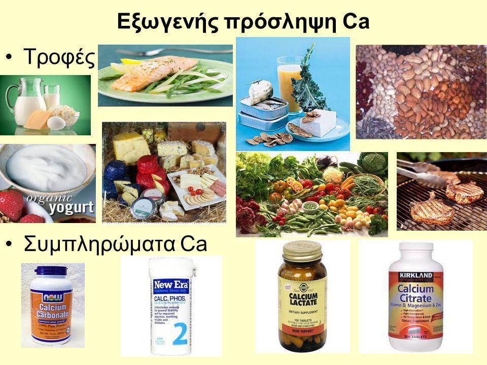 Εξωγενής πρόσληψη Ca Τροφές Συμπληρώματα Ca