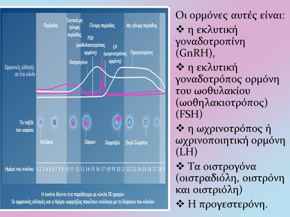 Οι ορμόνες αυτές είναι:  η εκλυτική γοναδοτροπίνη (GnRH),  η εκλυτική γοναδοτρόπος ορμόνη του ωοθυλακίου (ωοθηλακιοτρόπος) (FSH)  η ωχρινοτρόπος ή