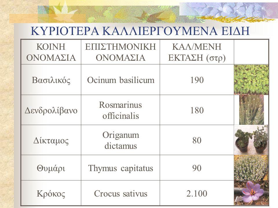 ΚΥΡΙΟΤΕΡΑ ΚΑΛΛΙΕΡΓΟΥΜΕΝΑ ΕΙΔΗ ΚΟΙΝΗ ΟΝΟΜΑΣΙΑ ΕΠΙΣΤΗΜΟΝΙΚΗ ΟΝΟΜΑΣΙΑ ΚΑΛ/ΜΕΝΗ ΕΚΤΑΣΗ (στρ) Λεβάντα Lavandula angustifolia 240 ΜένταMentha piperita110 ΡίγανηOriganum vulgare8.300 Τσάι του βουνού Sideritis syriaka630 ΦασκόμηλοSalvia officinalis180