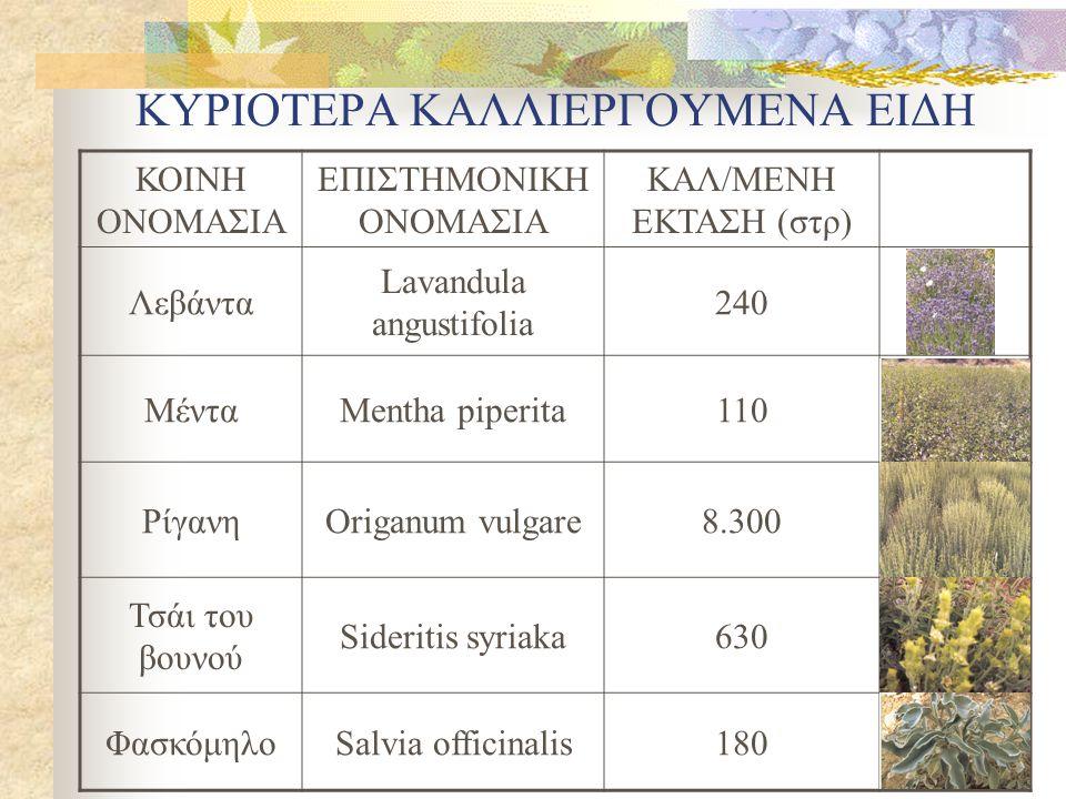 ΚΥΡΙΟΤΕΡΑ ΚΑΛΛΙΕΡΓΟΥΜΕΝΑ ΕΙΔΗ ΚΟΙΝΗ ΟΝΟΜΑΣΙΑ ΕΠΙΣΤΗΜΟΝΙΚΗ ΟΝΟΜΑΣΙΑ ΚΑΛ/ΜΕΝΗ ΕΚΤΑΣΗ (στρ) Λεβάντα Lavandula angustifolia 240 ΜένταMentha piperita110 Ρί