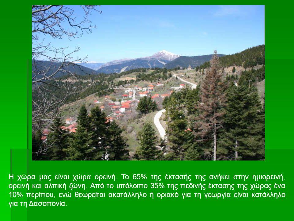 Η χώρα μας είναι χώρα ορεινή.Το 65% της έκτασής της ανήκει στην ημιορεινή, ορεινή και αλπική ζώνη.