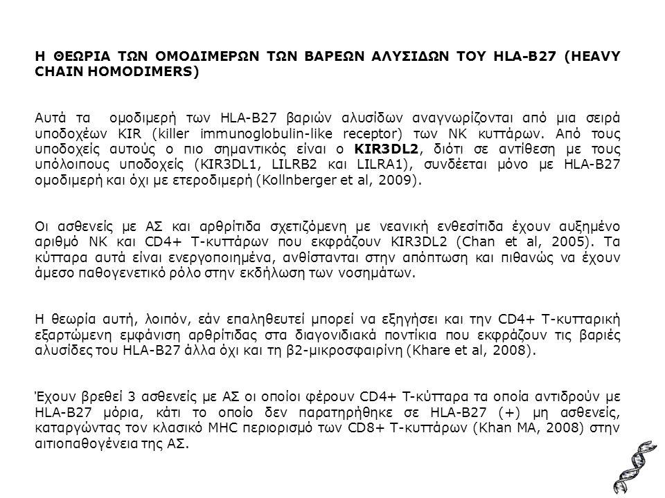 Η ΘΕΩΡΙΑ ΤΩΝ ΟΜΟΔΙΜΕΡΩΝ ΤΩΝ ΒΑΡΕΩΝ ΑΛΥΣΙΔΩΝ ΤΟΥ HLA-B27 (HEAVY CHAIN HOMODIMERS) Αυτά τα ομοδιμερή των HLA-B27 βαριών αλυσίδων αναγνωρίζονται από μια