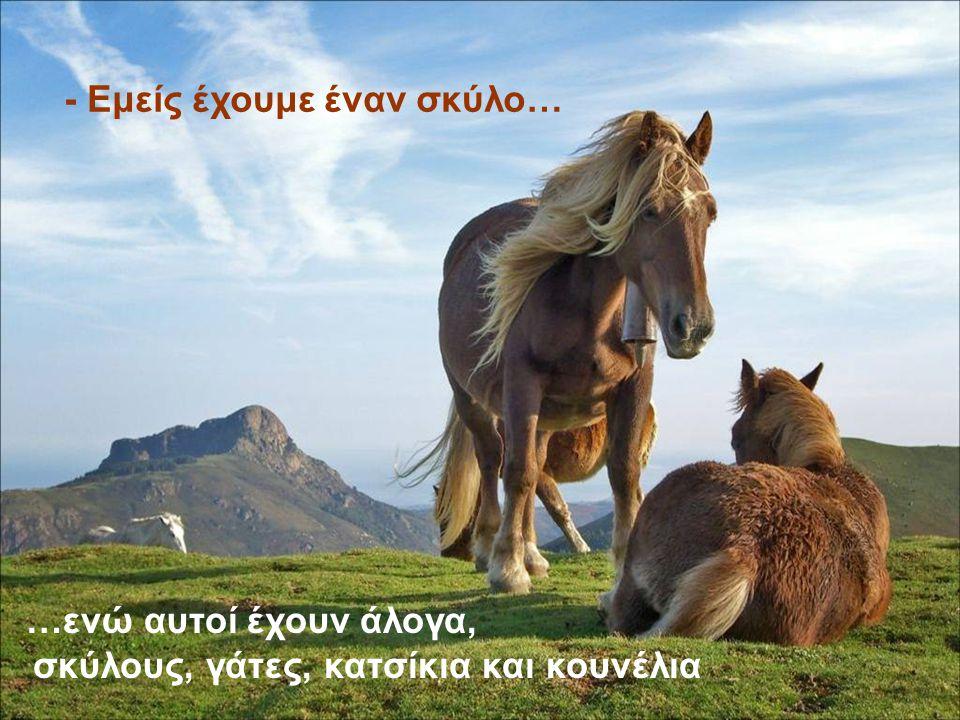 - Εμείς έχουμε έναν σκύλο… …ενώ αυτοί έχουν σκύλους, γάτες, άλογα, κατσίκες και κουνέλια - Εμείς έχουμε έναν σκύλο… …ενώ αυτοί έχουν άλογα, σκύλους, γάτες, κατσίκια και κουνέλια