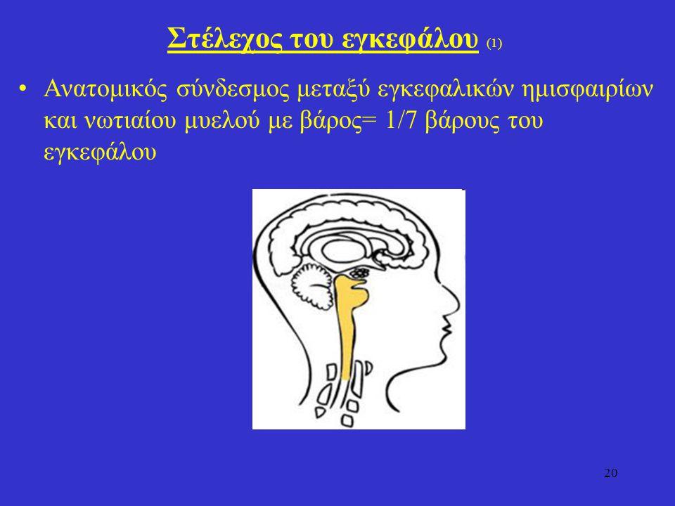 20 Στέλεχος του εγκεφάλου (1) Ανατομικός σύνδεσμος μεταξύ εγκεφαλικών ημισφαιρίων και νωτιαίου μυελού με βάρος= 1/7 βάρους του εγκεφάλου