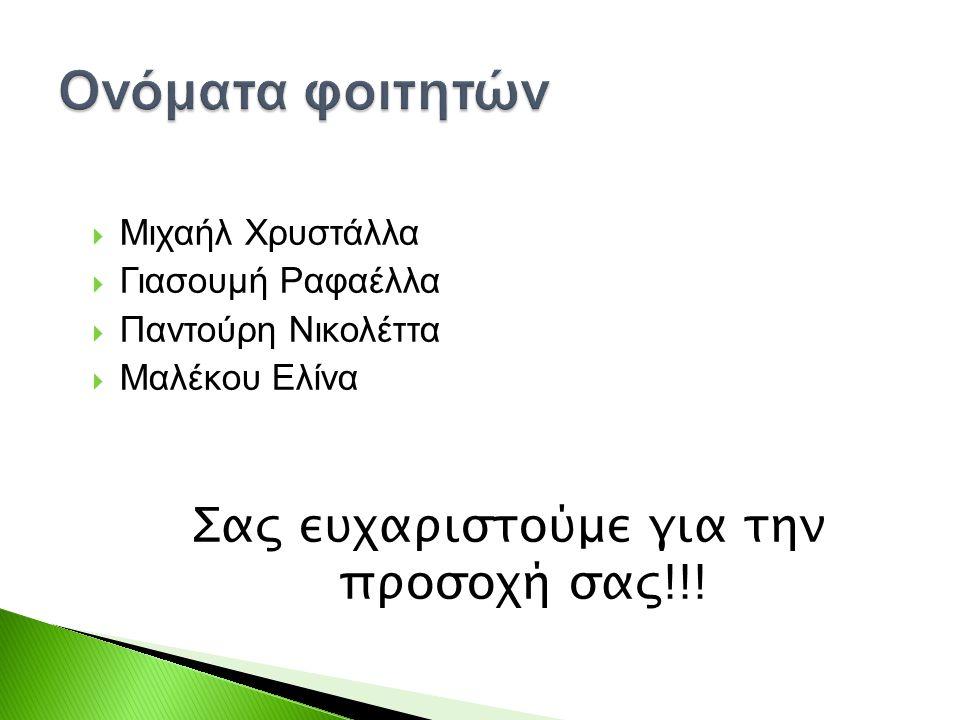  Μιχαήλ Χρυστάλλα  Γιασουμή Ραφαέλλα  Παντούρη Νικολέττα  Μαλέκου Ελίνα Σας ευχαριστούμε για την προσοχή σας!!!